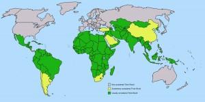 third world map2